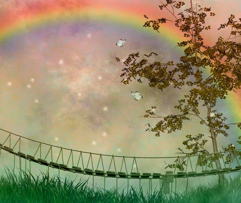 Rainbow Bridge Heaven
