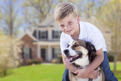 Searching for Pet-friendly holiday accommodation — hit and miss?